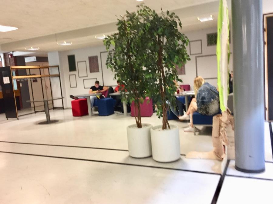 Estudiantes haciendo la tarea fuera del aula